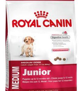 غذای خشک سگ نژاد متوسط در دامپزشکی شبانه روزی